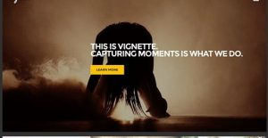 CSS Igniter Vignette WordPress Theme 1.7