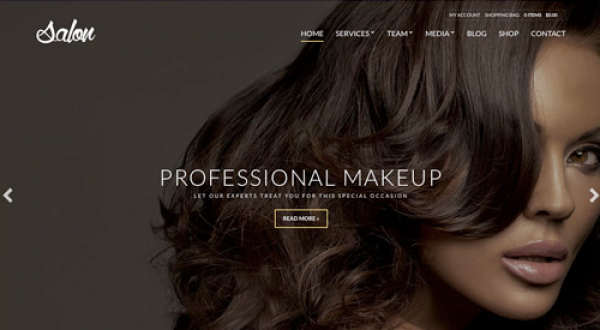 CSS Igniter Salon WordPress Theme 1.6